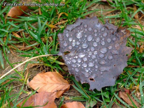 Répáshuta ősszel is szép