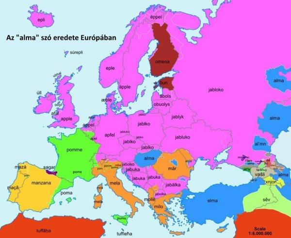 nyelv térkép